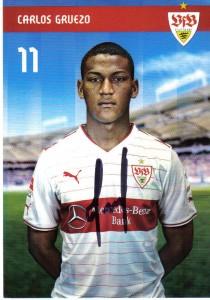 AK_13-14_VfB_Gruezo,Carlos_11