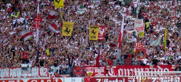 140920_vfb_hoffenheim_www.soke2.de002