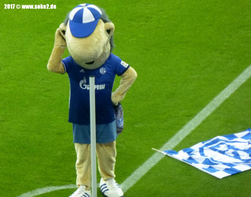 soke2_17-18_170910_Schalke_VfB_P1050945