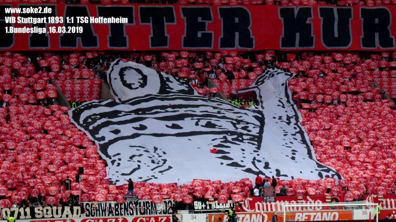 Soke2_190316_VfB_Stuttgart_TSG_Hoffenheim_2018-2019_P1090230