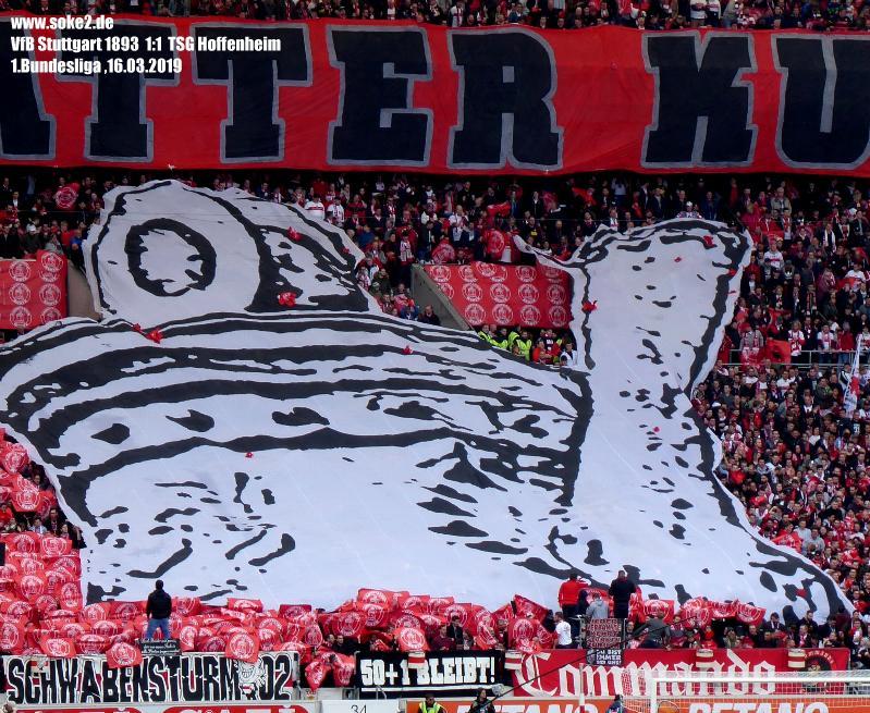 Soke2_190316_VfB_Stuttgart_TSG_Hoffenheim_2018-2019_P1090233