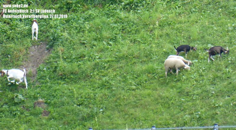 Soke2_190727_FC_Anderlsbuch_SV_Ludesch_Vorarlbergliga_P1140943