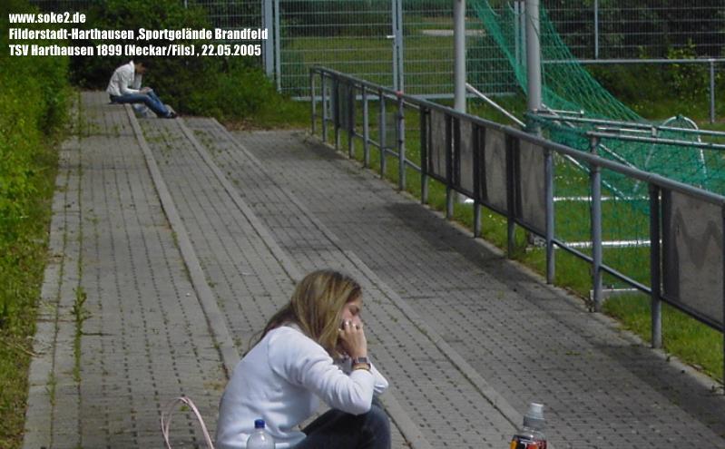 Ground_Soke2_050522_Harthausen_Brandfeld_Neckar-Fils_PICT1594