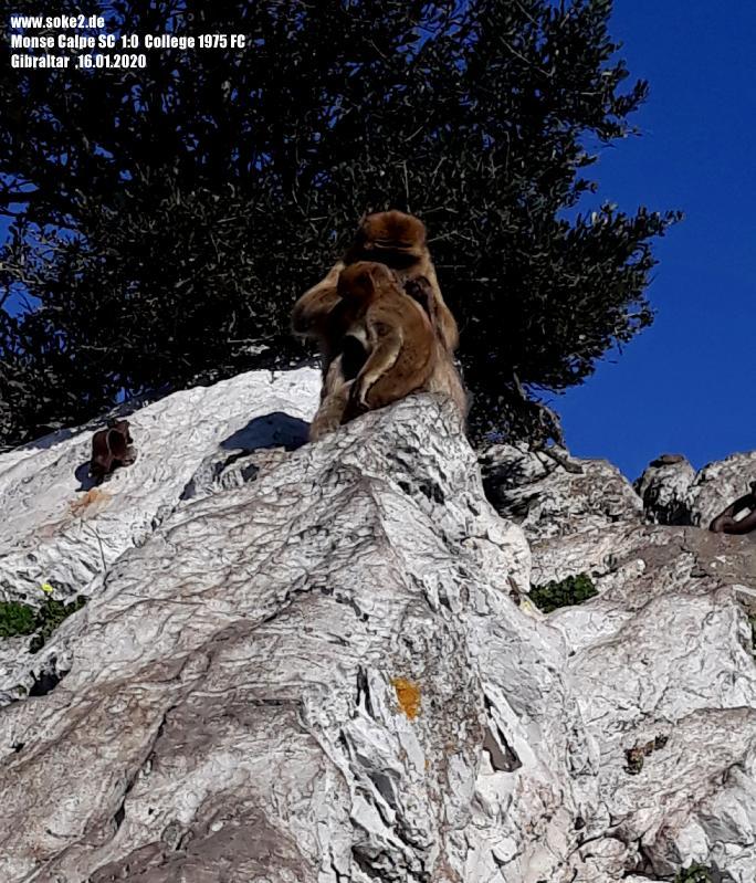 200116_Gibraltar_20200116_150854