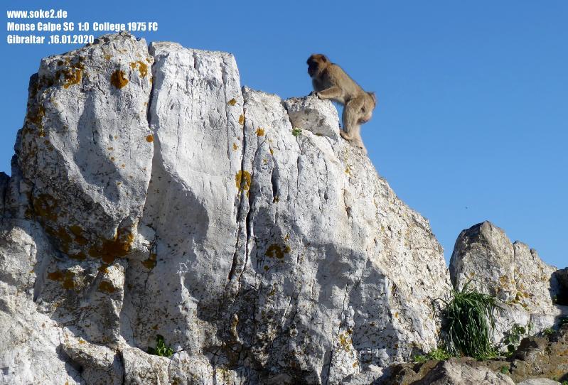 200116_Gibraltar_P1220297