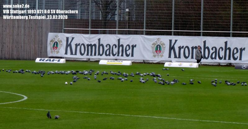 Soke2_200223_VfB_II_Oberachern(Testspiel)_P1240496