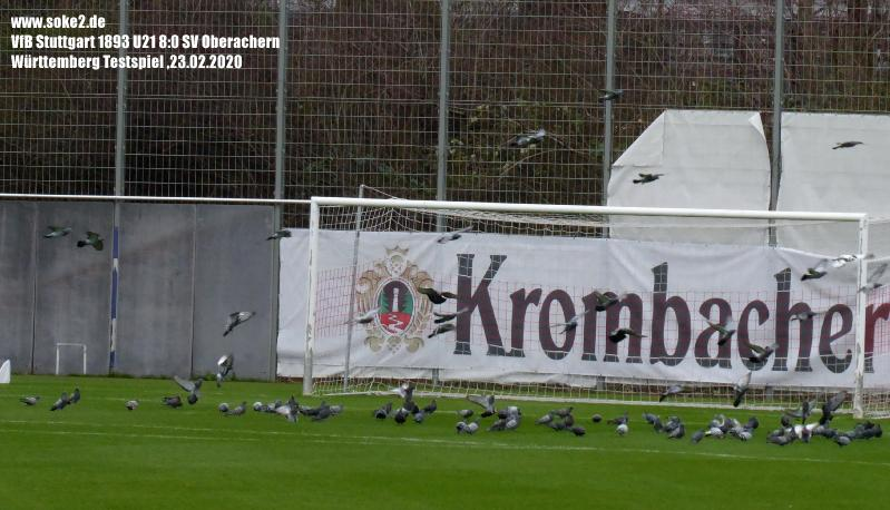 Soke2_200223_VfB_II_Oberachern(Testspiel)_P1240506