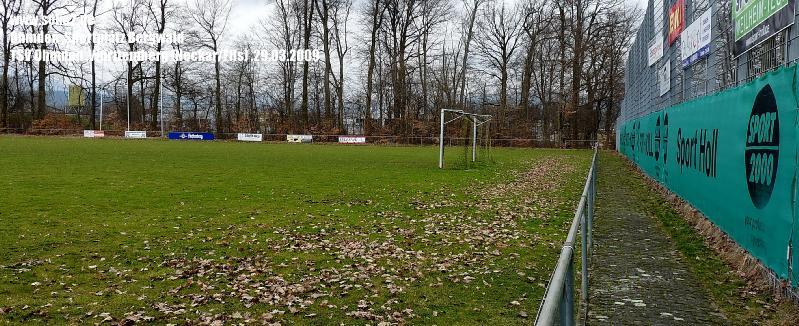 Ground_Soke2_090329_Ohmden_Bergwald_Neckar-Fils_P1040429